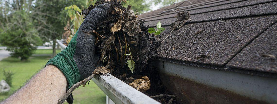 Gutter Cleaning Professionals- Louisville Kentucky